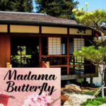 An honest review of 'Madama Butterfly', a Japanese heartbreak opera